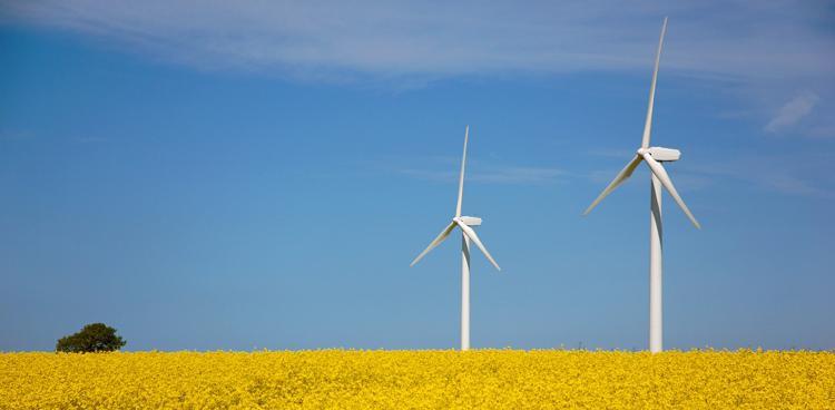 Windkraft_Petra Bork-pixelio