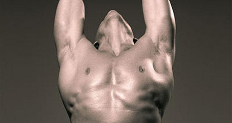 399px-Nude_male_torso_2