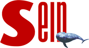 Sein.de logo