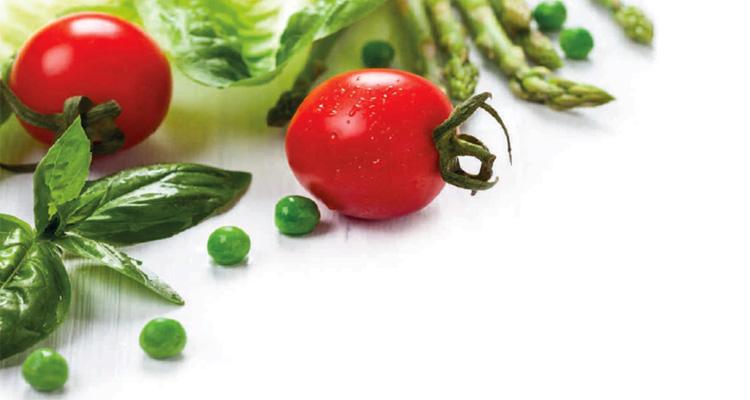 vegetarismus weltreligion