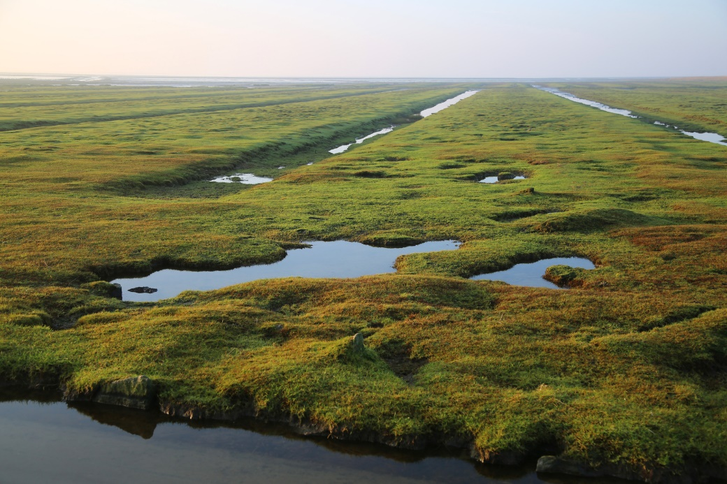 Für manche sind flache Küstenlandschaften, hier Flandern, zu monoton. Der Vorteil ist jedoch: Gerade weil sie so flach sind, ist das Wandern dort sehr einfach.
