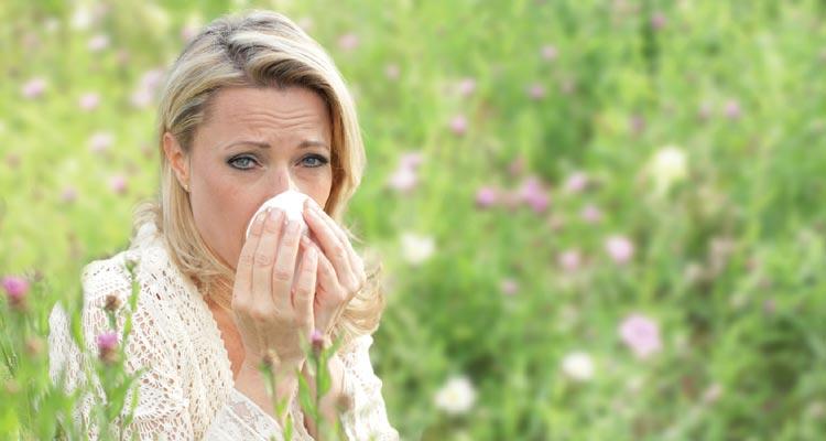 Allergien der Atemwege
