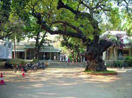 ashram-maharshi
