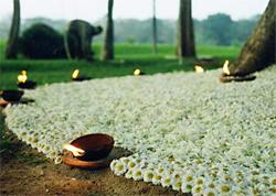 Auroville Kerzen