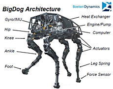 Big Dog Roboter