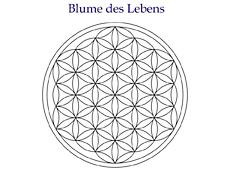 blume-des-lebens