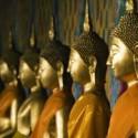 buddh-statuen