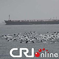 delfineteaser