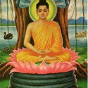 erleuchtung-buddha