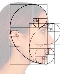 Goldener Schnitt und Fibonacci Spirale im menschlichen Gesicht