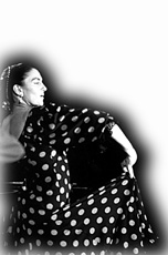 flamenco1cut