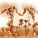 gardenlovers