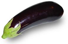 gen-aubergine-indien