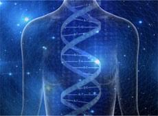 gene-keys-koerper-dna