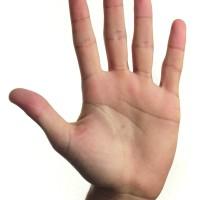 hand-handlinien