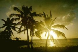 hawaii7