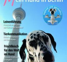 hundberlin-cover