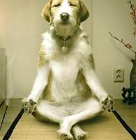 meditation_5
