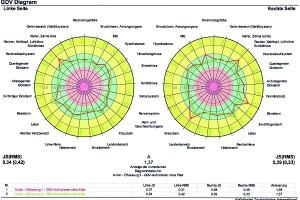 oase-kreisdiagramm