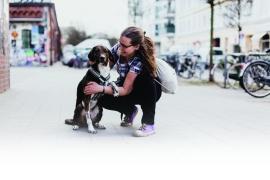 renner-hund