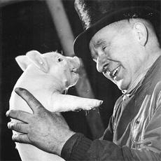 Schweinegrippe Betrug