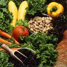 vegetarischer-wochentag