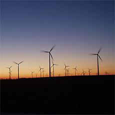 windpark_1