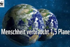 wwf-report-2014